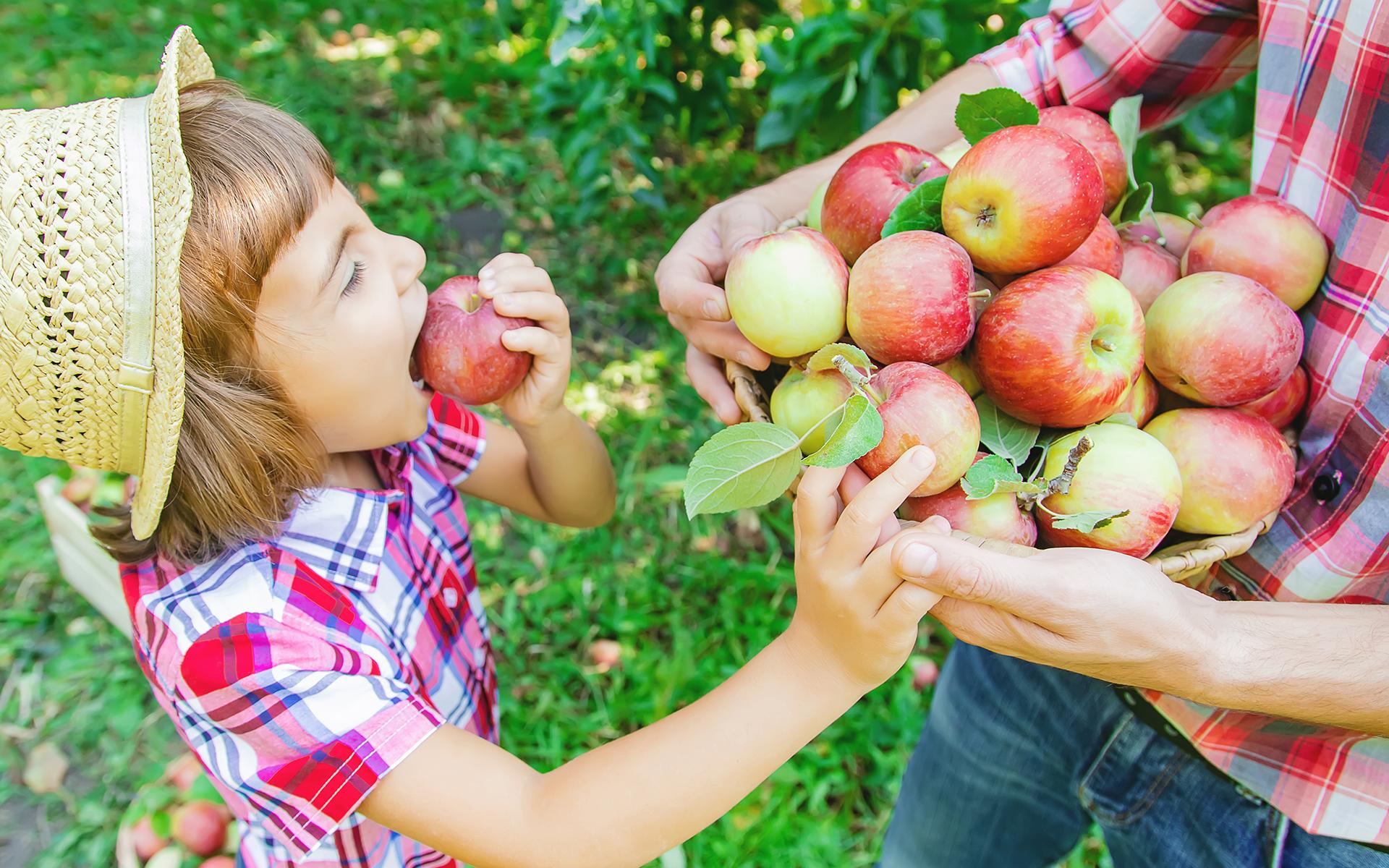 Proteja as suas crianças – escolha alimentos biológicos