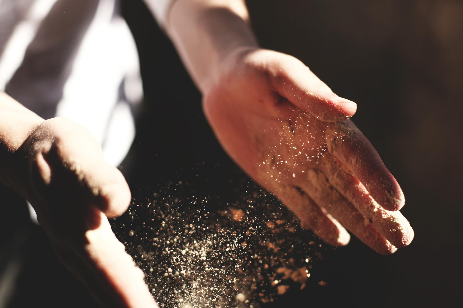 Alimentos biológicos apoiam uma economia justa